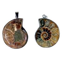 Ammonitt - anheng