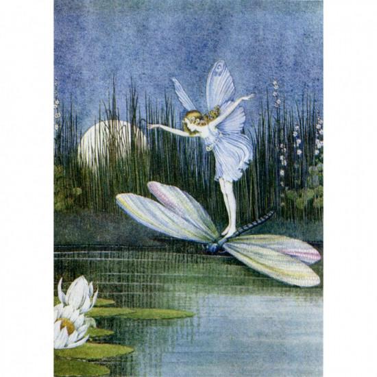 Birthday - Fairy Dragon - Kort