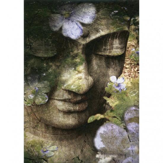 Inner Tranquility - Kort