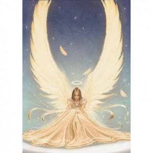 Angel  - Purity - Kort