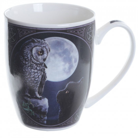 Purrfect Wisdom Owl and Cat - Krus